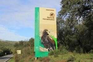 Sendero del Águila (P.N. de la Sierra de Hornachuelos)